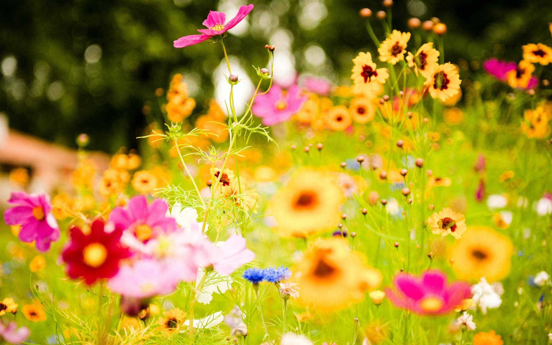 Top 5 meest voorkomende klachten bij fibromyalgie