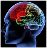blog-overspannen-brein